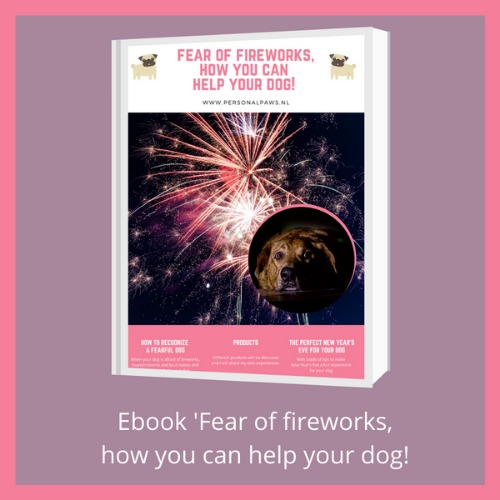 fireworks_ebook_500_v2